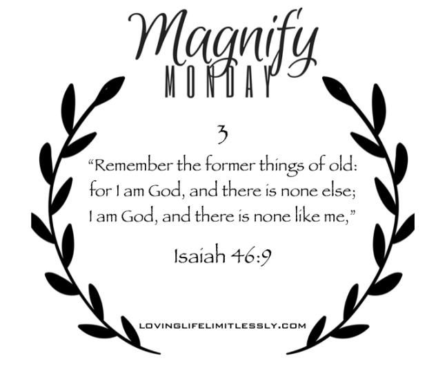 magnify-monday-3
