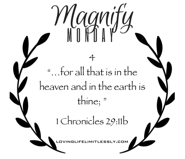 magnify-monday-4